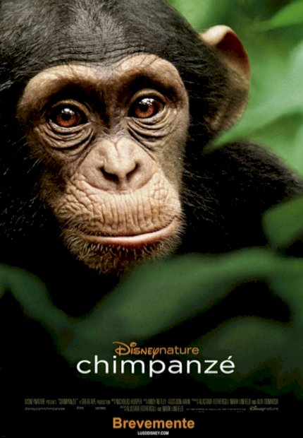 Chimpanzés: Disneynature (Chimpanzee)