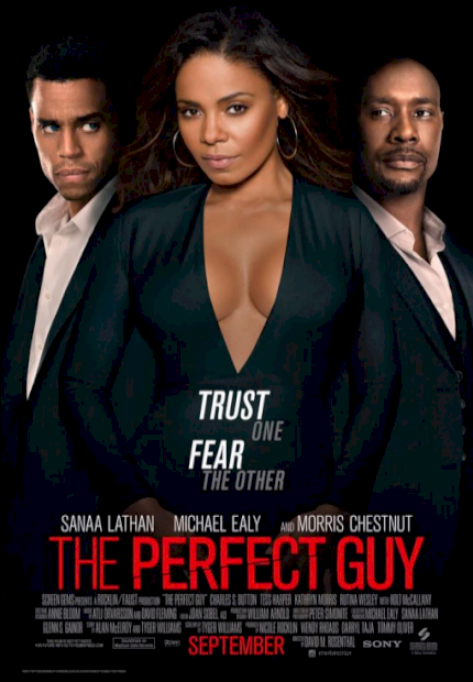 The Perfect Guy (The Perfect Guy)