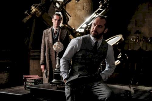 Dumbledore é gay, em Animais Fantásticos 2, afirma Erza Miller